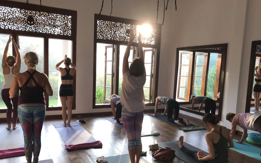 Yogaretreat Sri Lanka 7-16/11 2019